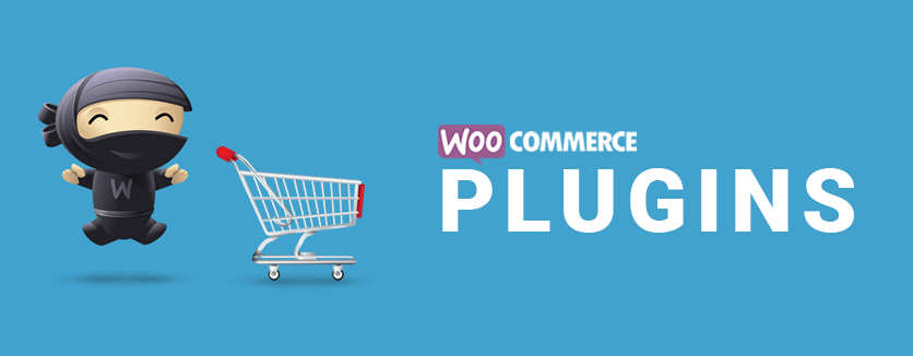 11 Must-Have WooCommerce Extensions for Business Owners