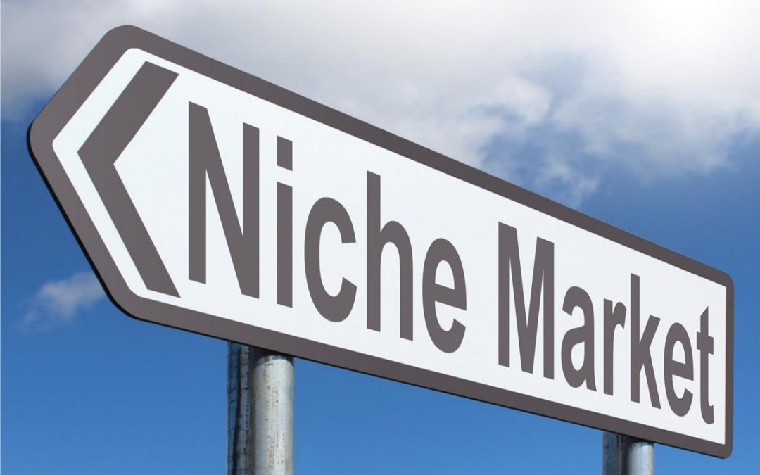 How to Find the Perfect Product Niche for Your Store in 2020 (Updated)